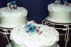 blurry-cakes